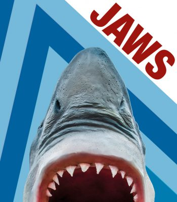 Jaws, crazy golf hole - Teezers